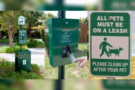 responsible-pet-owner-awareness-campaign